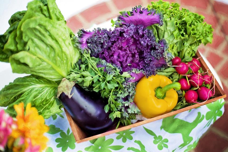 vegetables-790022_960_720